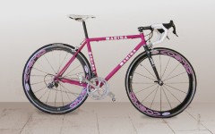 Bicicleta marisa 1